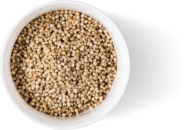 Gluten Free White Whole Sorghum Grain
