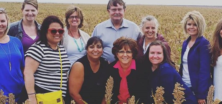 Sorghum Farm Tour